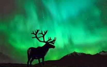 Google pone la Aurora Boreal de Finlandia frente a tus ojos