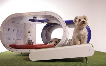 Samsung diseña la casa para perros perfecta