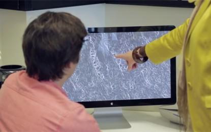 """Conocerás tus más recónditos rincones con """"Google Maps para el cuerpo"""""""