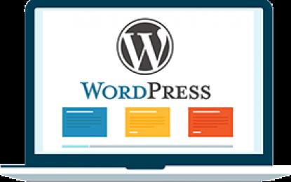 ¿Cómo Corregir el Color y la Pérdida de Saturación al Subir Imágenes a WordPress?