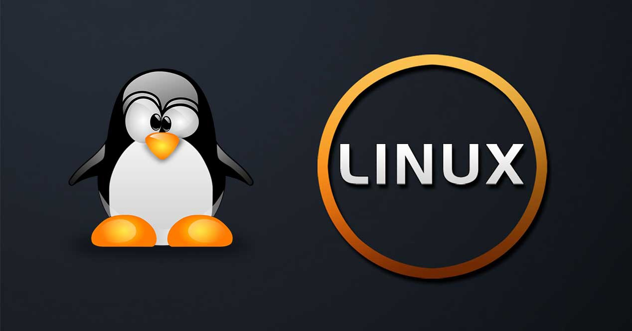 Distribuciones Linux, Elige la que más Necesites