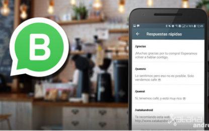 Integra WhatsApp a tu empresa (CRM, ERP, Sitio Web, App Móvil, etc)