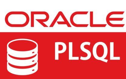 Bloques Anónimos, Procedimientos Almacenados, Funciones y Triggers sobre una base de datos Oracle 19C