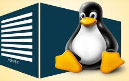 Las mejores distribuciones Linux para usar en servidores