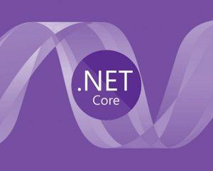¿Desarrollo de .NET 5?