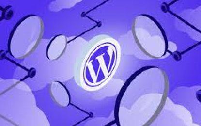 Funciones y diferencias de WordPress .com y .org